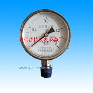 YTF耐高溫壓力表